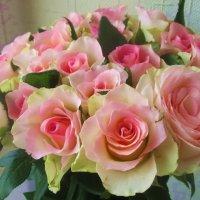 Розы :: татьяна