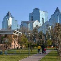 Весна в Алматы. :: Anna Gornostayeva