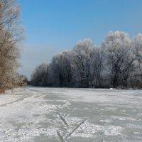 Зима :: Роман Савоцкий