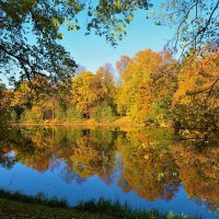 Зазеркалье в Елагин Парке... :: Sergey Gordoff