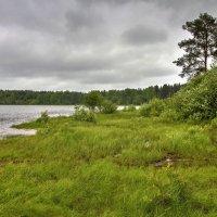 Когда ветер дует с озера :: Константин