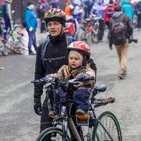 Велосипедисты :: Владимир Леликов