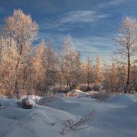 Морозным январским утром... :: Александр Попов
