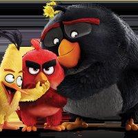 Angrybirds :: Aliya Orumbaeva