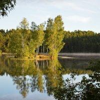 Утро на озере... :: Юрий Цыплятников