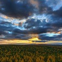 Закат над тайгой :: vladimir Bormotov