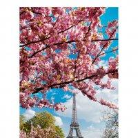 Эйфелева башня в сакуре! :: Фотограф в Париже, Франции Наталья Ильина