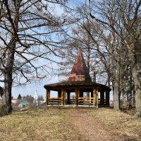 Весна в парке :: Татьяна
