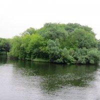 Островок на реке :: Дмитрий Никитин