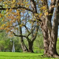 Весенний парк :: Алексей Цветков