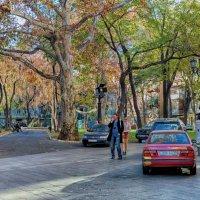 Осень в Пале-Рояле. :: Вахтанг Хантадзе