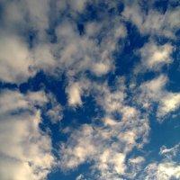 Небо :: Лидия Цейер