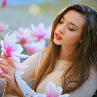 Красиво цветет магнолия :: Павел Прозоров