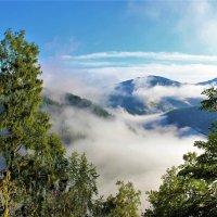 Туман в долине :: Сергей Чиняев