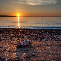 Закат на Керченском полуострове. Поселок Курортное. :: Ольга