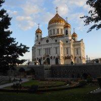 В луче заката... :: Надежда Азарченко
