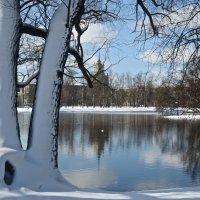 парадоксы апрельской погоды :: Елена