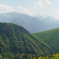 ДОЛИНА КУЛОСЬИ перевал Зелёный, пик Охотничий, Чимган.. :: Виктор Осипчук