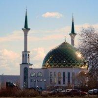 Мечеть Мунира :: ирина