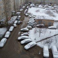 и снова зима... :: александр дмитриев