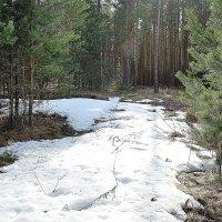Последний снег :: Николай Масляев