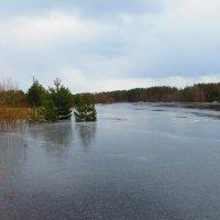 Такое вот ледяное половодье этой весной... :: ВАЛЕНТИНА ИВАНОВА