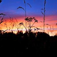 закатное небо :: mihail