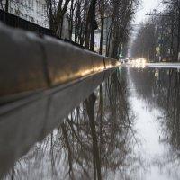 Вечерний апрель... :: Екатерина Маринина