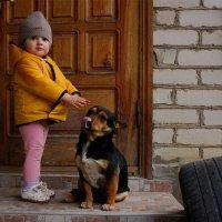 Подружки :: Наталия Сарана