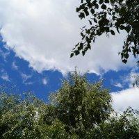 Небо июля..... :: Ольга