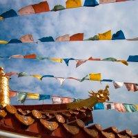 Храм Гуаинь в Наньшань :: Вера Перекольская