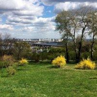 Киев. Ботанический сад. :: Сергей Рубан