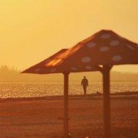 Пляж :: Александр Довгий