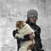 Собачье счастье :: Владимир Дядьков
