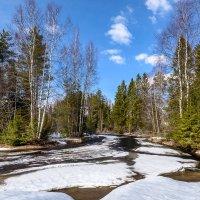 Весна) :: Борис Устюжанин