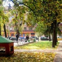 В городском сквере осенью :: Елена Семигина