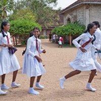 Девочки Шри Ланки. :: Ирина Токарева