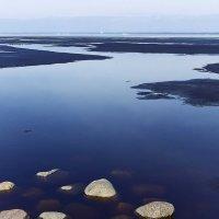 Финский залив. :: Ирэна Мазакина