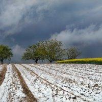 апрель промчался свежим снегом :: Elena Wymann