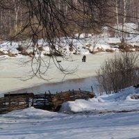 Рыбалка на Наре- охота пуще неволи :: Галина Оболдина