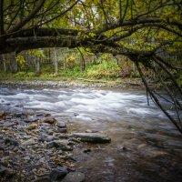 Горная река Шелеховка! :: Ирина Антоновна