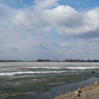 Остатки зимы :: Alla Swan