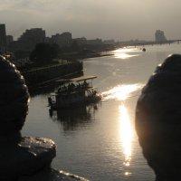 Поклонники Солнца наблюдают  отражение в воде резонанса Шумана... :: Алекс Аро Аро
