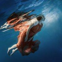 Native element :: Дмитрий Лаудин