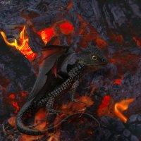 """Коллаж """"Детеныш дракона"""" и мои свежие отзывы на сайте otzyvy.pro :: Наталья (ShadeNataly) Мельник"""