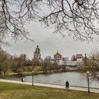 Сегодняшняя прогулка :: Владимир Иванов