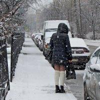 Где ты, весна? :: Ирина Румянцева