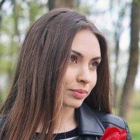 Тюльпан :: Андрей Майоров