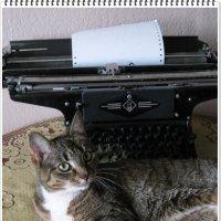 Пора писать Мурмуары... :: muh5257