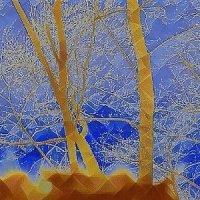 Зима или весна? :: Валерий Розенталь